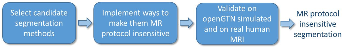 About openGTN project - Goal and contrast insensitive MRI segmentation